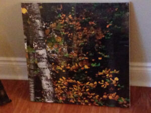 "Fall artwork - ready to hang 19.5""x19.5"" - New in plastic"
