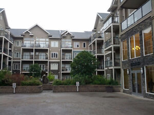 Professional Fully Furnished Condo by Whyte Ave, 10121 80 ave,