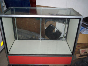 Display Case with 2 Glass shelves ( READ AD )