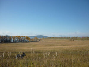 234.3 Acres on Green Lake North Road
