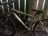 CCM TORRENT MOUNTAIN BIKE