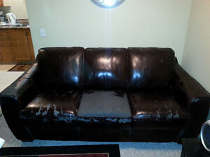 Free Damaged Couch and Loveseat