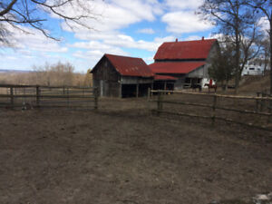 HORSE BOARDING AVAILABLE