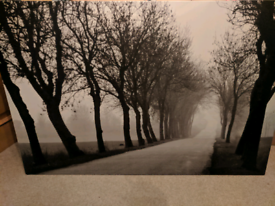 Large Black and white Modern Tree, Road Print