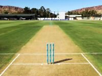 Cricketer wanted Cricket players needed play League Friendly Midweek T20 Weekdays Sat/Sun 40 overs