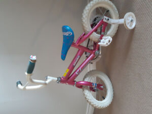 Childrens Bicycle with Training Wheels