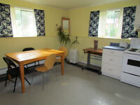 Large 1 Bedroom Apartment -  Mature Student Preferred