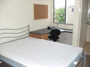 Fully furnished room Sippy Downs Sippy Downs Maroochydore Area Preview