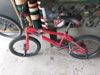 BMX Bile