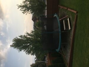 14 Foot Trampoline for Sale