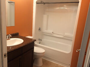 Above Ground Basement Apartment For Rent.