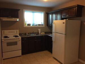 **New Price**3 Bedroom near MUN and Avalon Mall