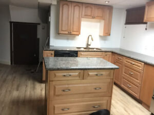 1 Bedroom plus den newly professionally developed space
