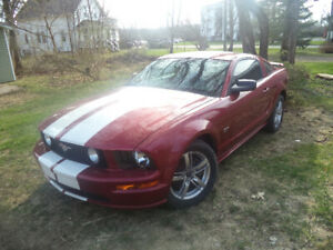 Looking for 2006 Mustang parts!