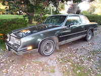1984 Olds Cutlass Supreme Coupe