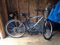 SportTek Bike