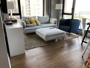 Executive furnished Condo ideal medical residency/fellowship
