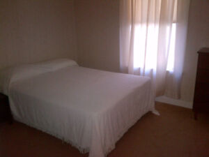 Large 1 Bedroom Central located apartment (Utilities included)