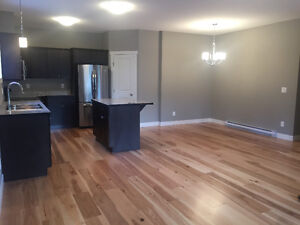 Brand New 2 Bedroom Condo/Townhouse in Salmon Arm
