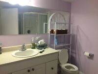 Beautiful 2 Bedroom Basement Unit with ALL UTILITIES