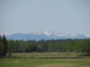 Cattle Ranch /Farm Land ~ 1112 Acres~ North Green Lake Area