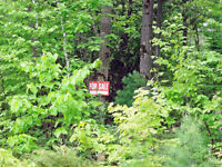 Lot for sale on Bellehumeur road Georgian Bay!