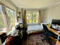 A bright, sun-filled room for rent in the Upper Beaches