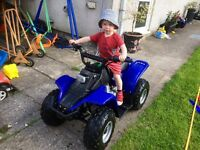 Kazuma Meerkat 50cc Semi-Auto 4 Speed Kids Quad Child Quad Bike Blue
