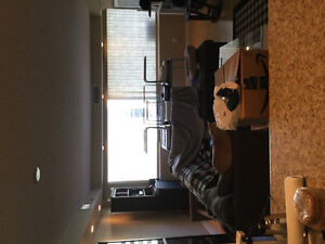 1 bedroom Downtown Apartment for sublet Immediately