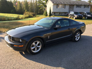 2007 Ford Mustang V6 SUPER CLEAN ONLY 105K $7495 certified.