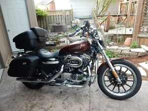 2009 Sportster For Sale. Root Beer Paint