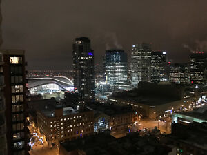 Fully Furnished Executive 2 BR Condo in ICON 1 Downtown Core Edmonton Edmonton Area image 2