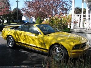 2006 Ford Mustang Pony kit Cabriolet