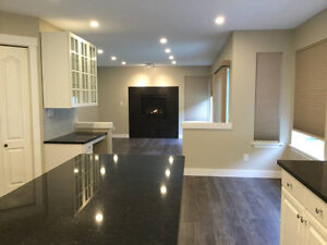 Luxury 7 Bdrm House with Spearate walk out basement