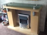Elec fire with surround