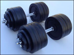 WANTED: Standard Weights for Dumbbells