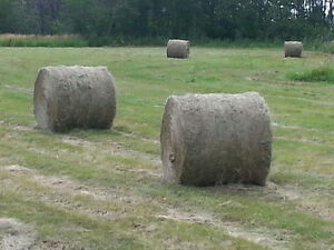 Round Feed Bales For Sale