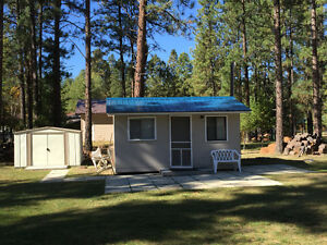 Small cabin on large lot for sale in beautiful Wasa