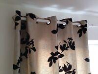 Next curtains