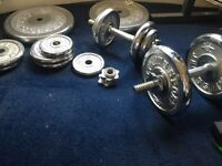Weider 244 workout bench and weights.