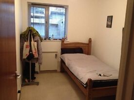 Small Double Room in Beautiful Flat in Exeter