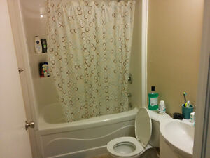 4 Month Sublet (May - Aug) - 5 Cardill Crescent Kitchener / Waterloo Kitchener Area image 1