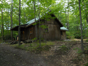 hunting camp and sugar bush Kingston Kingston Area image 2