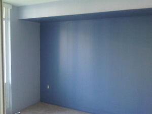 SKILLED PAINTERS AND RENOVATORS, 15+ YEARS IN BUSINESS