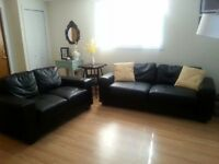 1 couch & 1 loveseat set