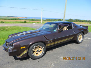1981 Camaro Z28 - Limited Edition