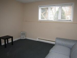 One bedroom apartment for rent St. John's Newfoundland image 2