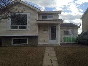 Large room for rent available now Edmonton Edmonton Area image 4