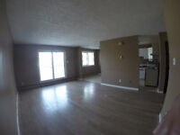 PONOKA ~ Large Bright 3 Bedroom Bi Level unit (Pet Friendly)