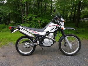 2010 Yamaha XT250 dual sport
